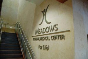 meadows regional medical center
